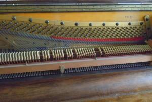 DSCN2583 (Copier)